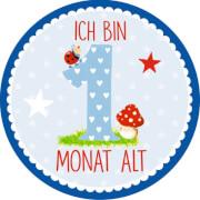 BabyGlück - Meilenstein-Sticker: Babys erstes Jahr, blau, 20 Sticker